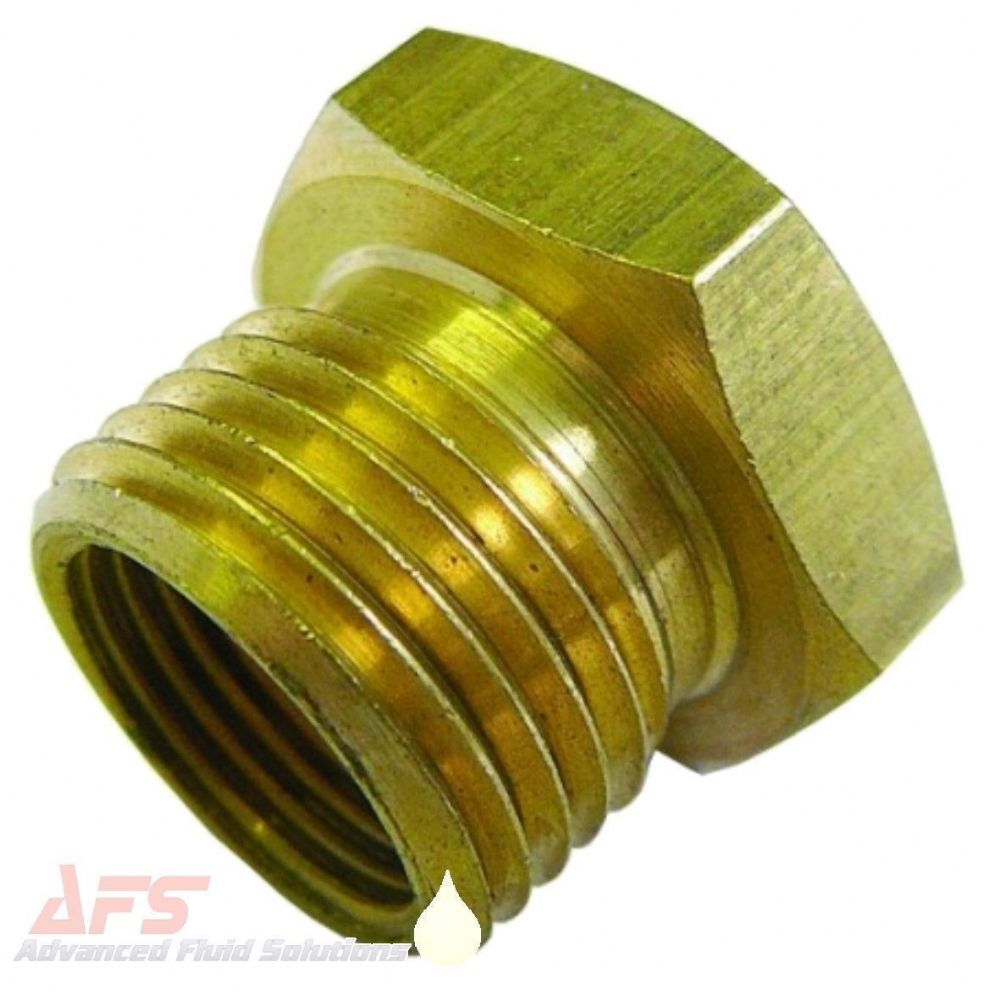 1 BSPP x 1/2 BSP Female Brass Bush